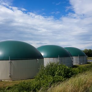 image-biogas-power-plants-600x600